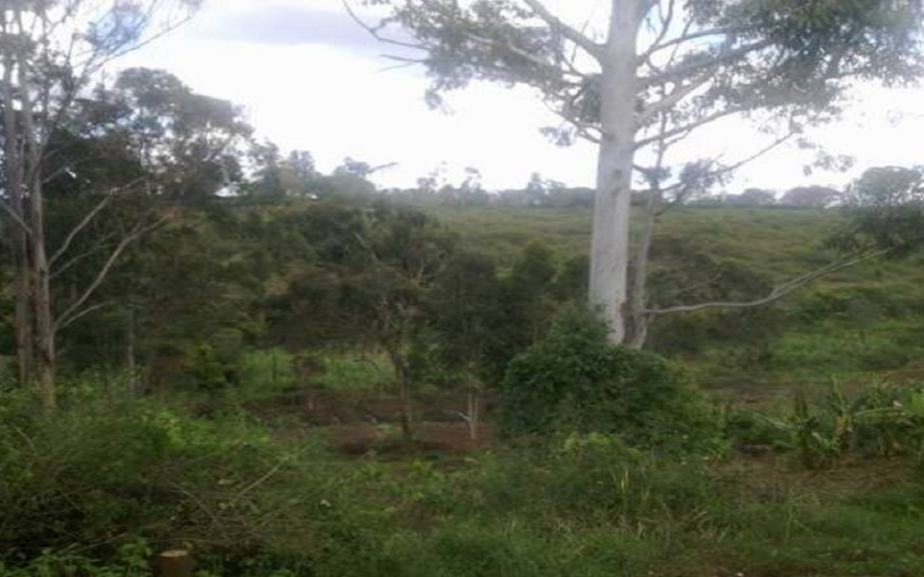 Prime Property for Sale – Thika