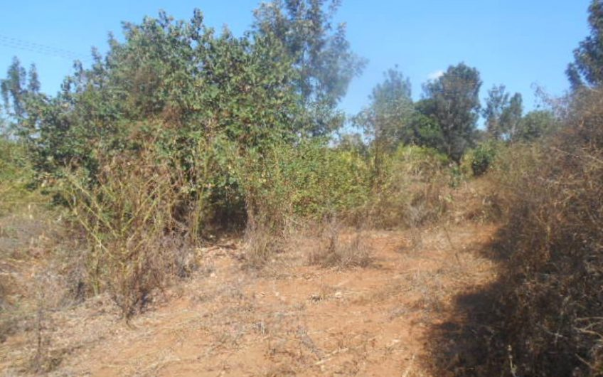 1 Acre Vacant Agricultural Plot for Sale